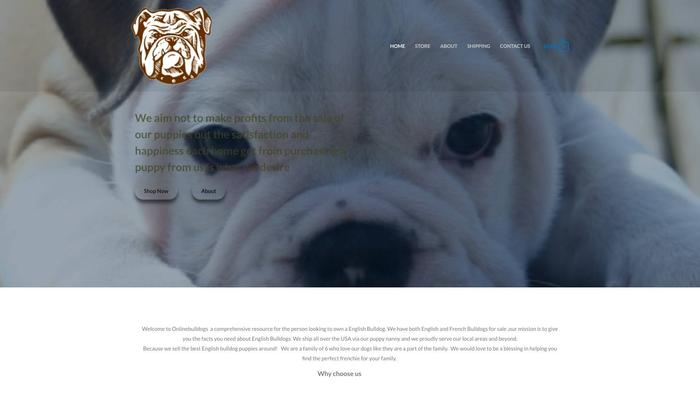 Onlinebulldogs.com - Bulldog Puppy Scam Review