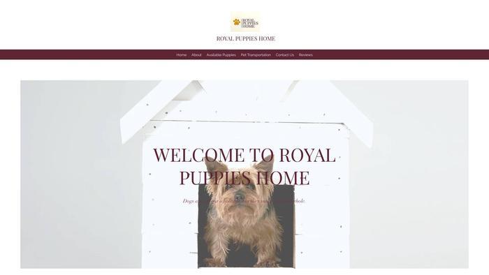 Royal-puppieshome.com - Cavapoo Puppy Scam Review
