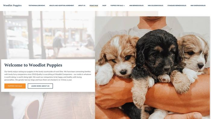 Woodlotdoodles.store - Bernedoodle Puppy Scam Review