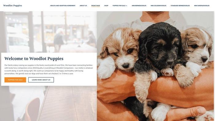 Woodlotpups.site - Bernedoodle Puppy Scam Review