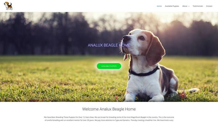Analuxbeaglehome.com - Beagle Puppy Scam Review