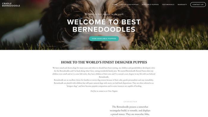 Cradlebernedoodle.com - Bernedoodle Puppy Scam Review