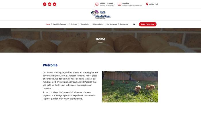 Cutefriendlypaws.com - Beagle Puppy Scam Review