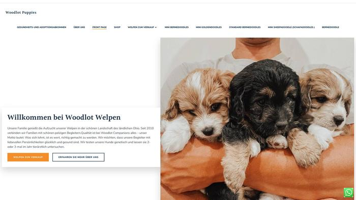 Doodleshop.store - Bernedoodle Puppy Scam Review
