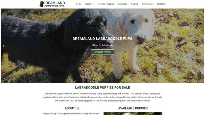 Dreamlandlabradoodlepups.com - Labradoodle Puppy Scam Review