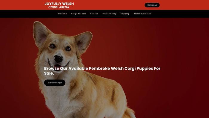 Joyfullywelshcorgiarena.com - Corgi Puppy Scam Review
