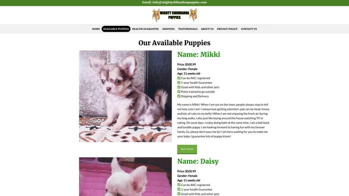 Mightychihuahuapuppies.com - Chihuahua Puppy Scam Review