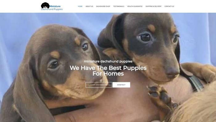 Miniaturedachshundpup.com - Dachshund Puppy Scam Review