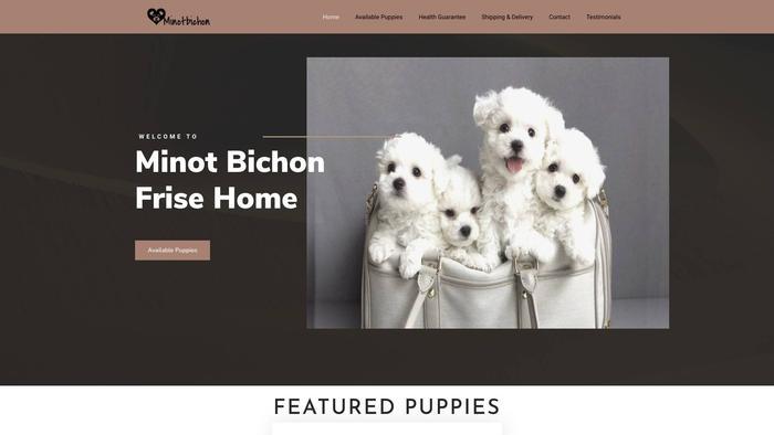 Minotbichonfrisehome.com - Bichon Frise Puppy Scam Review