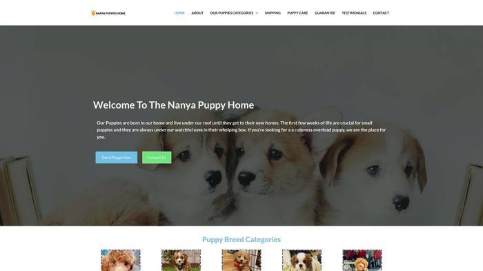 Nanyapuppieshome.com - Cavapoo Puppy Scam Review