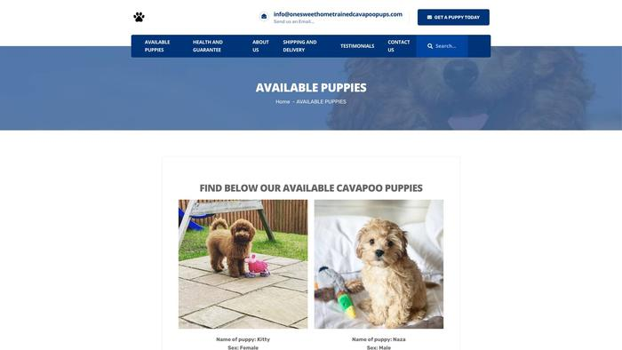 Onesweethometrainedcavapoopups.com - Cavapoo Puppy Scam Review