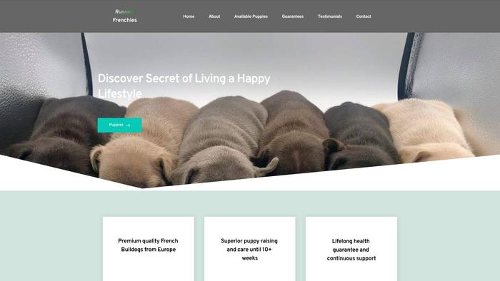 Runnelsfrenchies.com - French Bulldog Puppy Scam Review