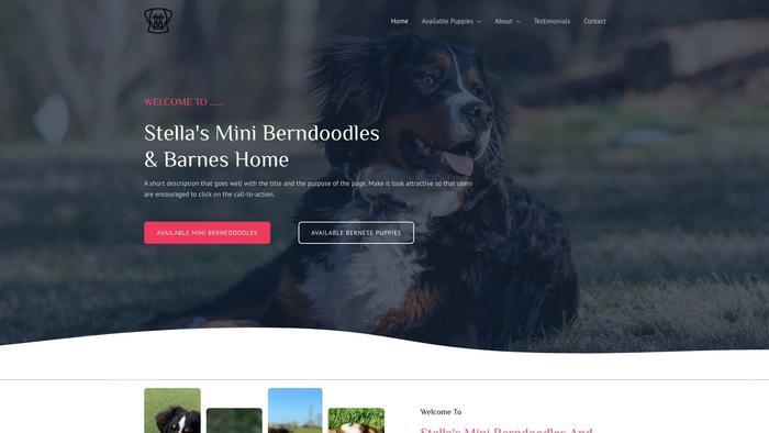 Stellaminibendoodlesandbarneshome.com - Bernedoodle Puppy Scam Review