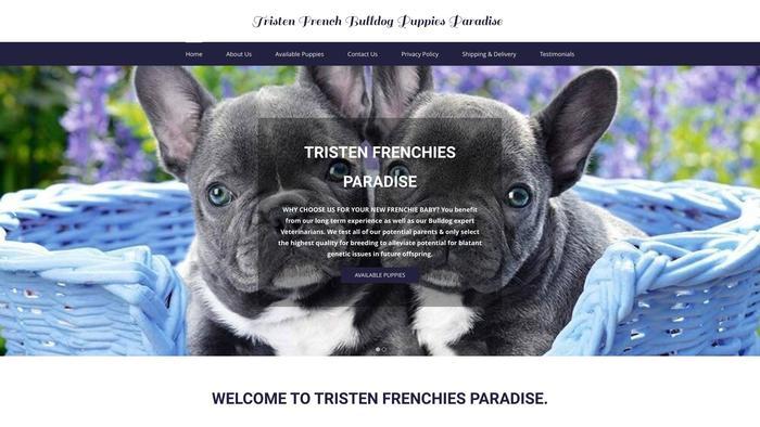 Tristenfrenchiesparadise.com - French Bulldog Puppy Scam Review