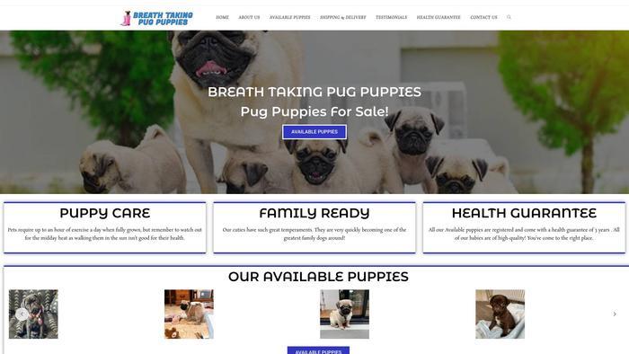 Breathtakingpugpuppies.com - Pug Puppy Scam Review