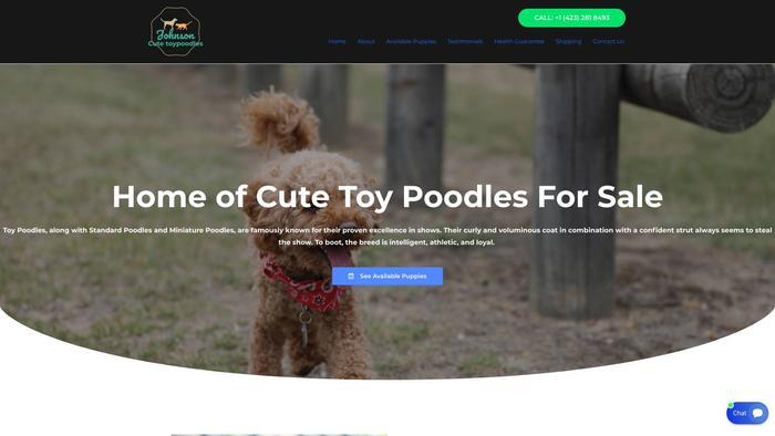 Johnsoncutetoypoodles.com - Poodle Puppy Scam Review
