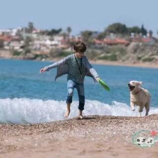 Happy boy running wit her dog on the beach
