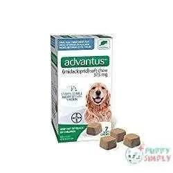 Advantus Soft Chew Flea and Tick Treatment