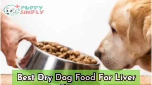 Best Dry Dog Food For Liver Disease