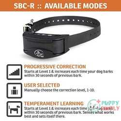 SportDOG Brand NoBark Rechargeable Collars 1