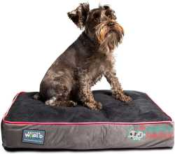 Better World Pets 5 Inch Thick Orthopedic Dog Bed