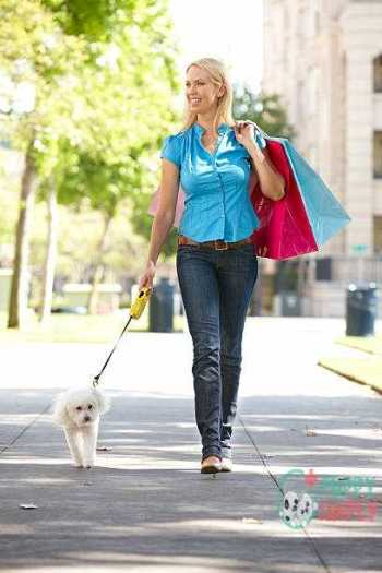 Tips for Walking with a Retractable Leash
