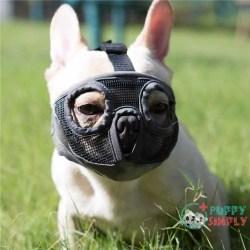 JYHY Short Snout Dog Muzzles-