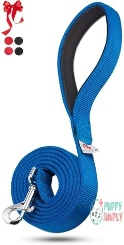 Pets Lovers Club Heavy Duty Dog Leash