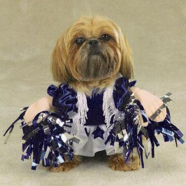 dog halloween costume cheerleader