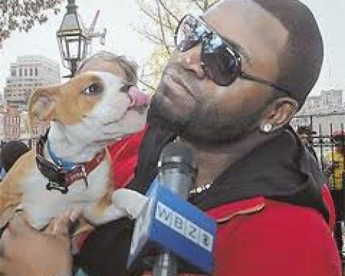 David Ortiz holding dog