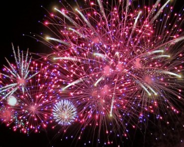 How to Keep Your Dog Calm During July 4th Fireworks