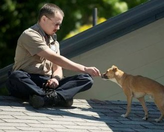 The Hot Dog Bits Rescue Dog is Reunited with Owner