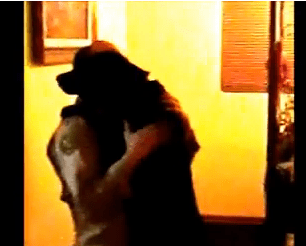Dog Video of the Day:  Another Amazing Military Man and Dog Reunite