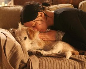 The Dog Health Protection Survey:  Are You Doing it Right?