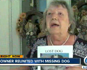 Missing Dog is Found after Three Years