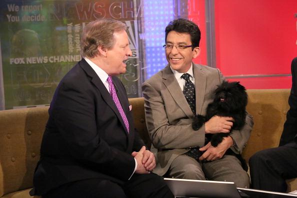 "Westminster Dog Show Best In Show Winner ""Banana Joe"" Visits Fox And Friends"
