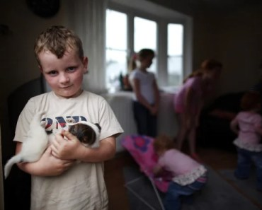 A 6-Year-Old Loses His Dog and Says Some Truly Moving Words of Wisom