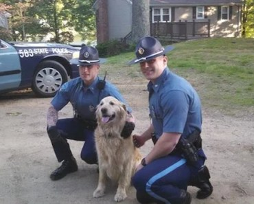Massachusetts Troopers Rescue Golden Retriever Trapped Under a Car