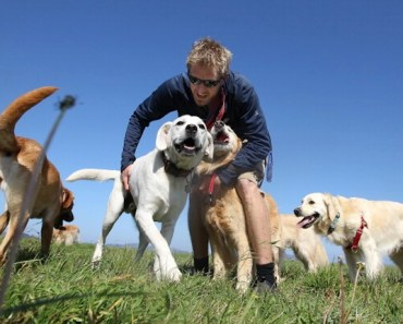 Five Ways to Tell if Your Dog is Ready for Doggy Daycare