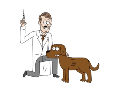 Did You Know Dogs Can Help Humans Treat Diabetes?