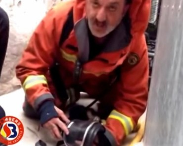 Heroic Firefighter Saves Puppy Using Mouth to Mouth