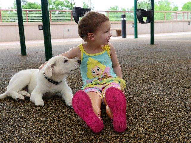 Dog and toddler 1