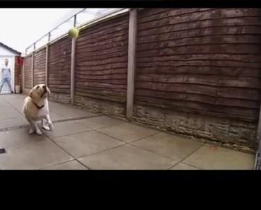 Fetch fail