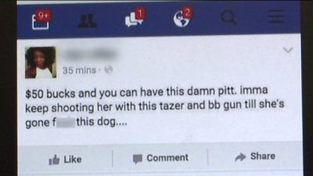 awful facebook posts lands woman in jail