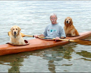 Man Builds A Beautiful Kayak For Himself And His Golden Retrievers