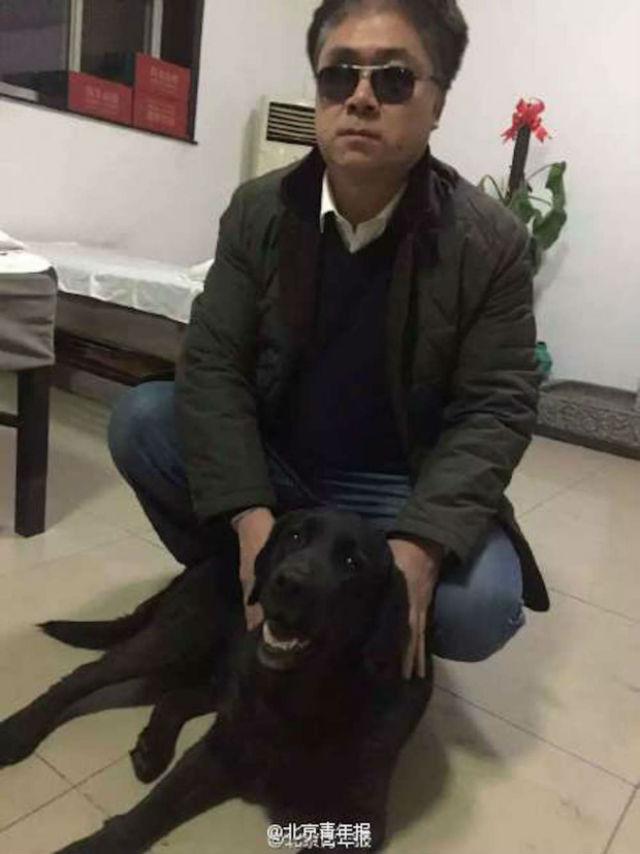 blind dog owner