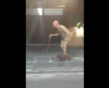 Dog Slows Down to Keep Up With His Elderly Owner
