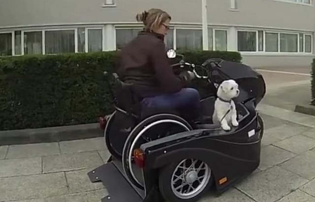 Watch A Woman in A Wheelchair Motorcycle Cruise with Her Dog