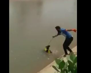 Indian Man Can't Swim, Removes Turban to Rescue Drowning Dog