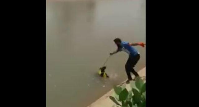 man saving puppy